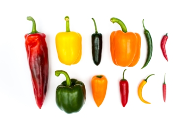 Chillies & Peppers, 2014